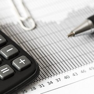 Online IGCSE Economics